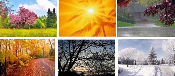 6 seasons